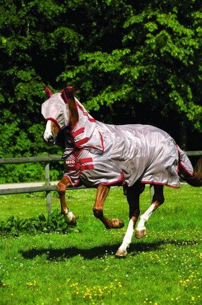 horseware pony insektdækken