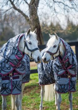 Horseware pony- og føldækkener