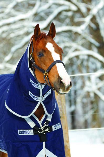 Horseware udedækken og vinterdækken