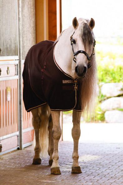 Horseware stalddækken 0-100 G
