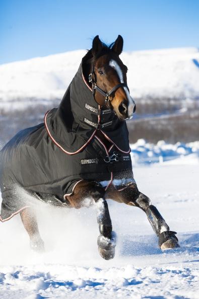 Horseware udedækken 300-450 G