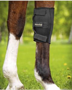 Knæbandage hest fra Back on Track