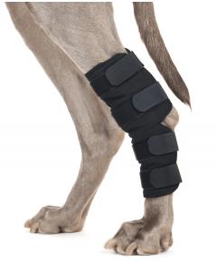 Hasebandage( Hund) fra Back on Track