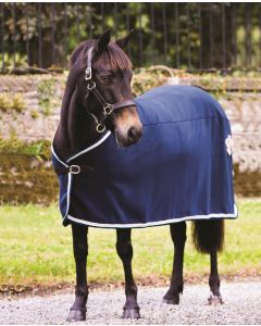 Rambo Show Rug - Navy (Navy with beige, baby blue & navy)