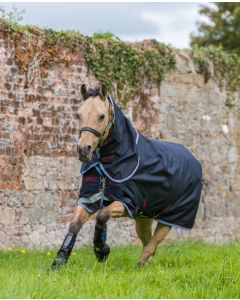 Amigo Bravo Lite Plus i pony-model