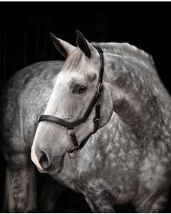 Horseware Rambo Micklem Headcollar - grime